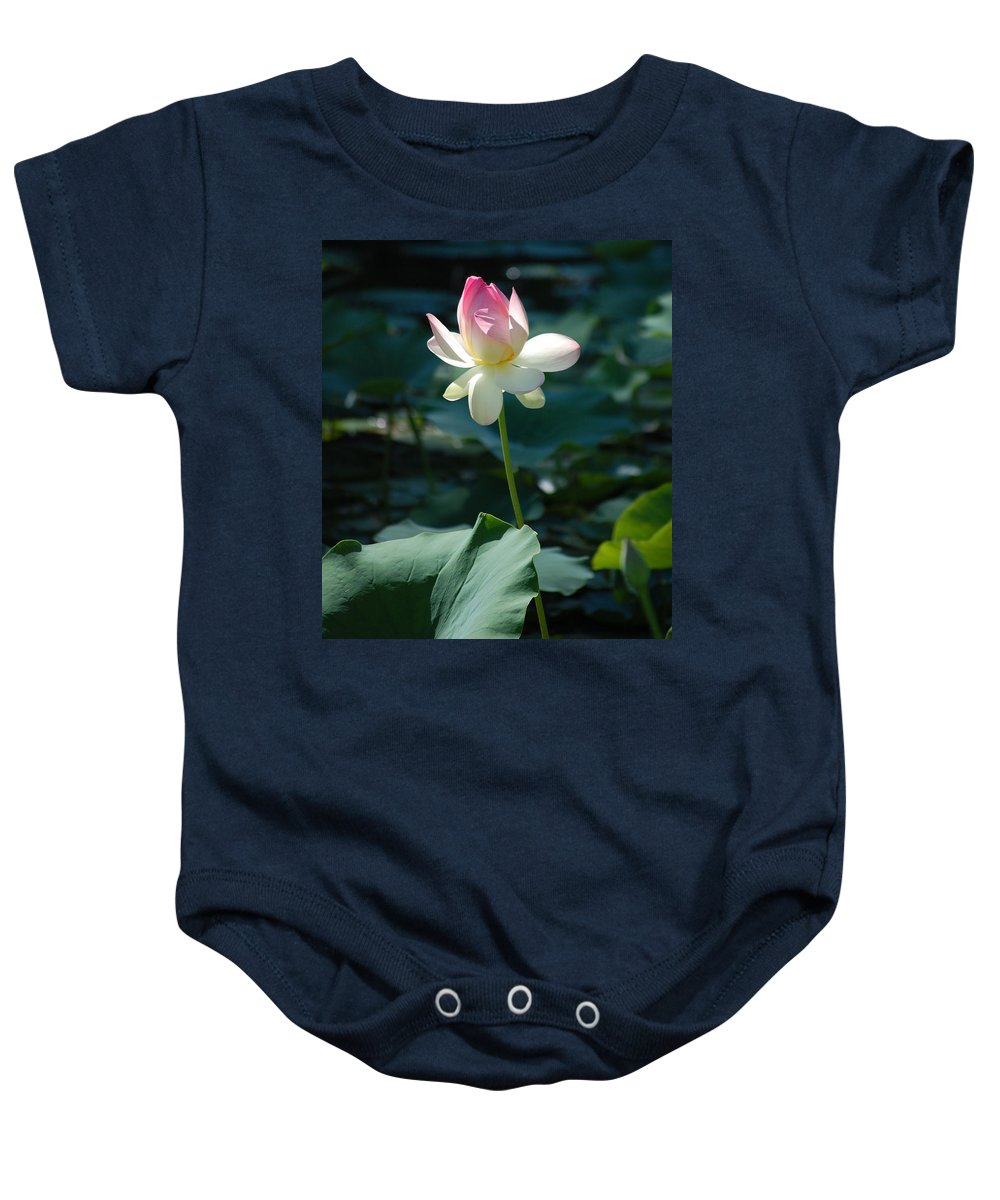 Lilly Pond Baby Onesie featuring the photograph Visit To Lilly Pond 2 by David Lane