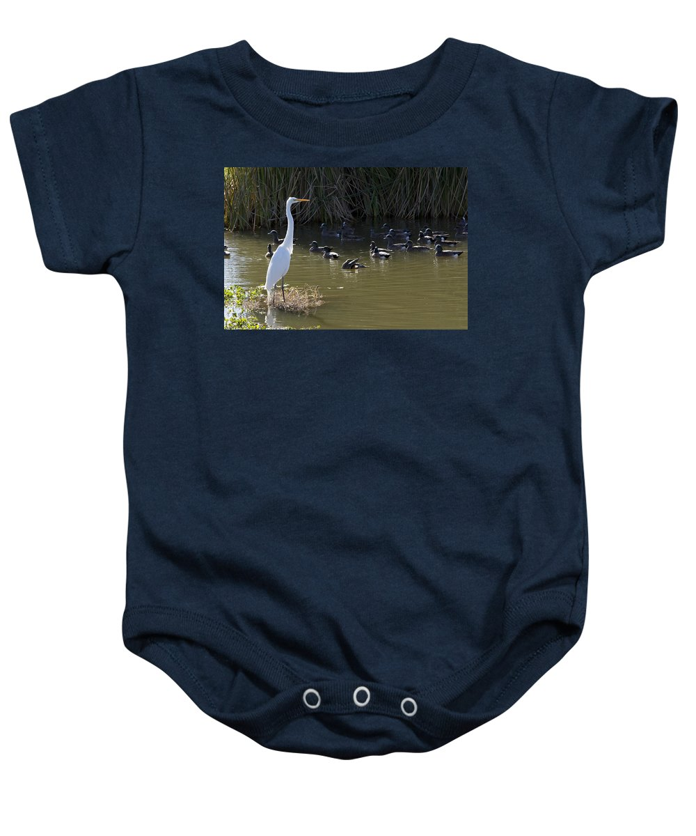 Heron Baby Onesie featuring the photograph White Beauty by Phyllis Denton