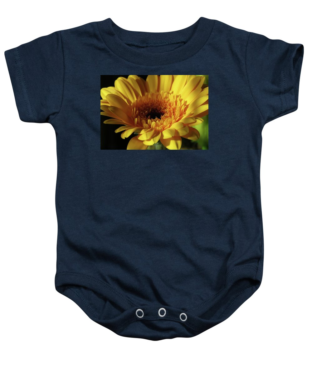 Gerbera Baby Onesie featuring the photograph Yellow Gerbera Macro by Johanna Hurmerinta