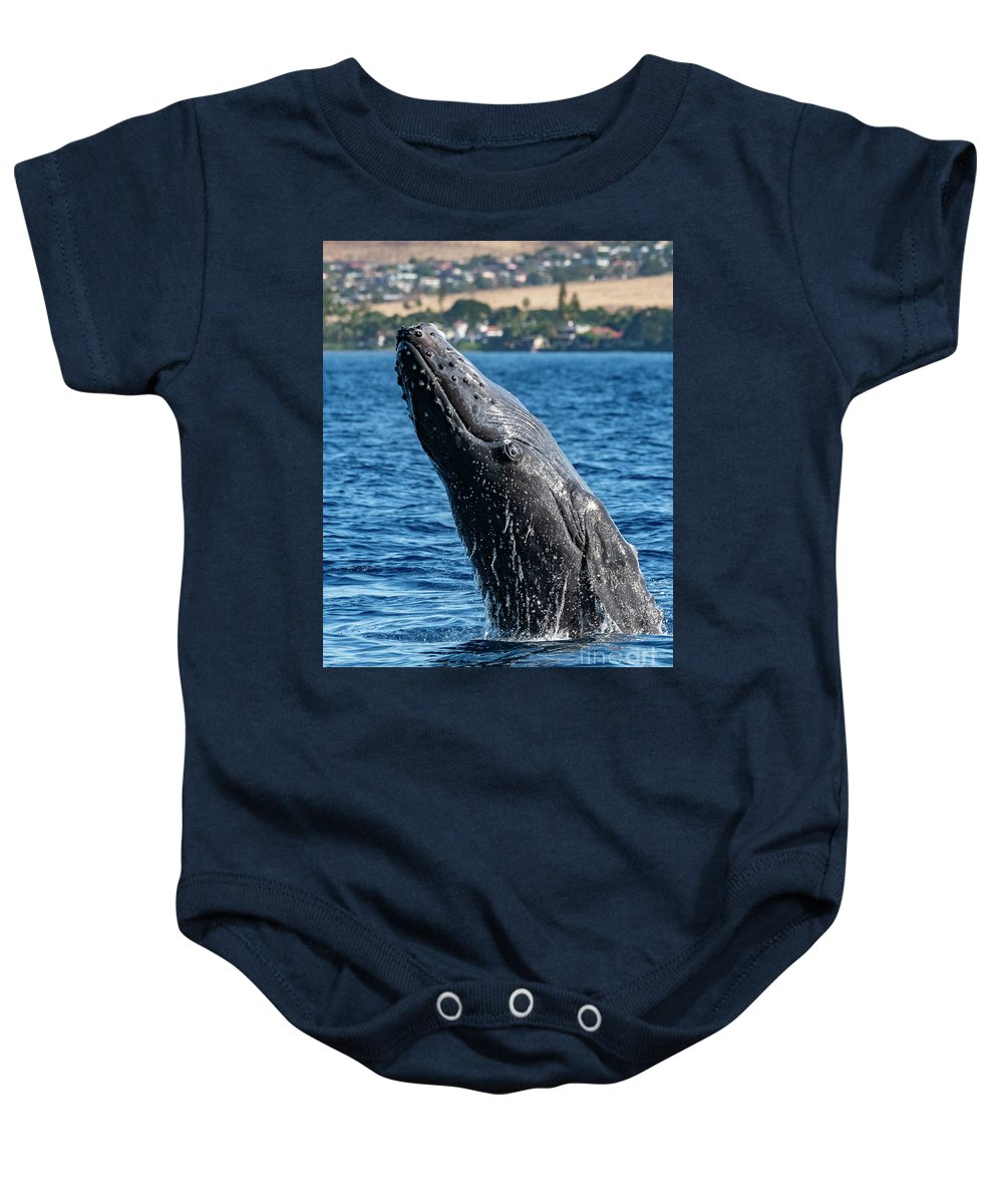 00595515 Baby Onesie featuring the photograph Juvenlie Humpback Breaching by Flip Nicklin