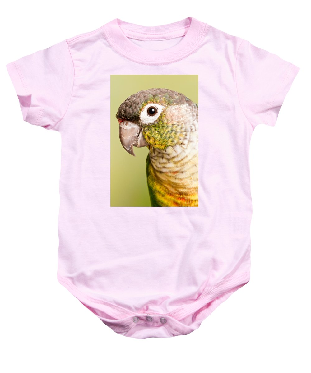 Green-cheeked Conure Baby Onesie featuring the photograph Green-cheeked Conure Pyrrhura Molinae by David Kenny