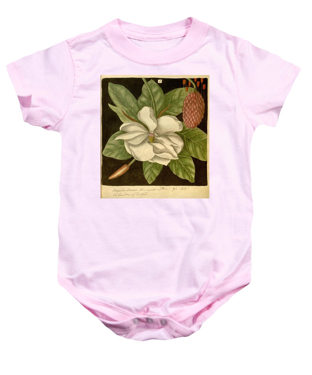 Magnolia Baby Onesie featuring the painting Magnolia by Philip Ralley