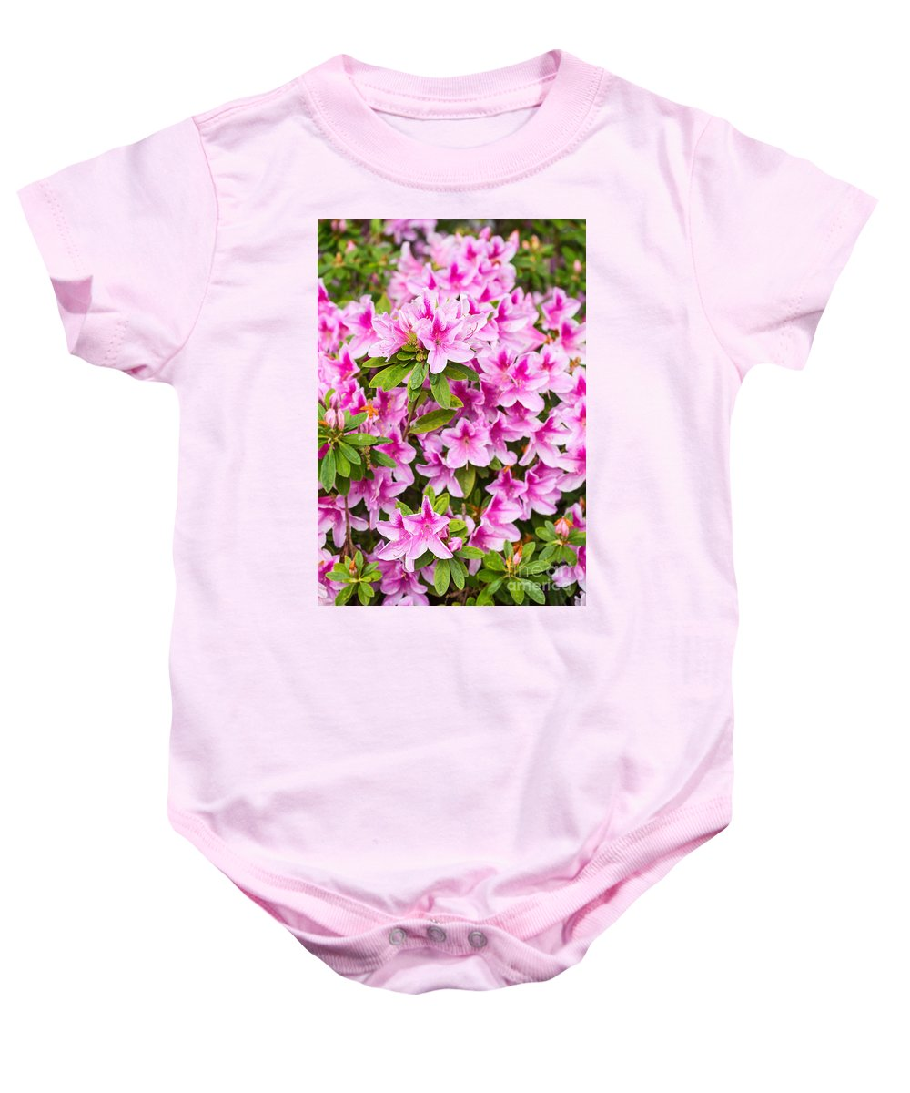 Pink Baby Onesie featuring the photograph Pretty In Pink - Spring Flowers In Bloom. by Jamie Pham