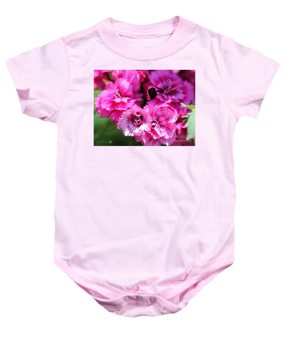 Mccombie Baby Onesie featuring the painting Sweet William From The Super Duplex Bluepoint Mix by J McCombie