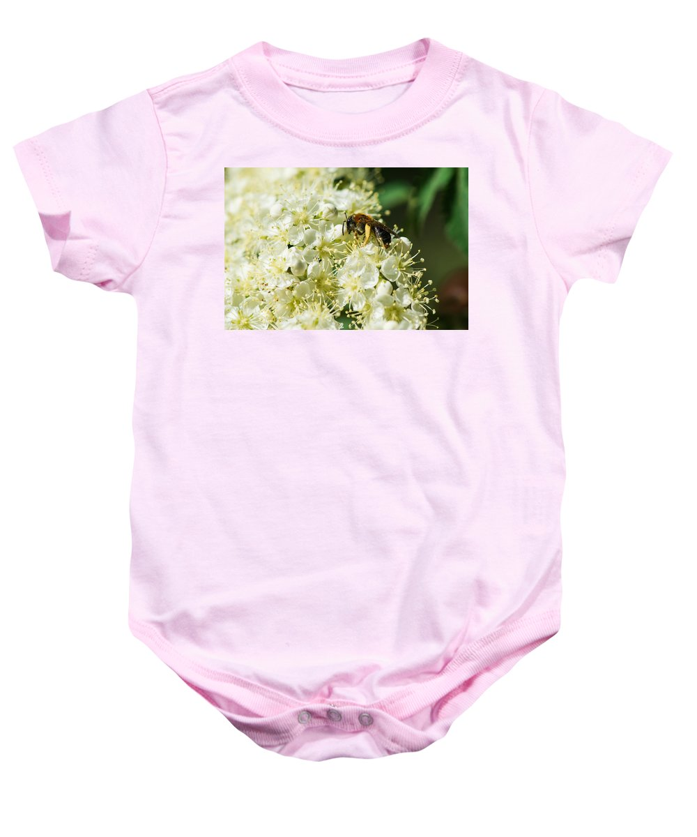 Animal Baby Onesie featuring the photograph Banquet by Alexander Senin