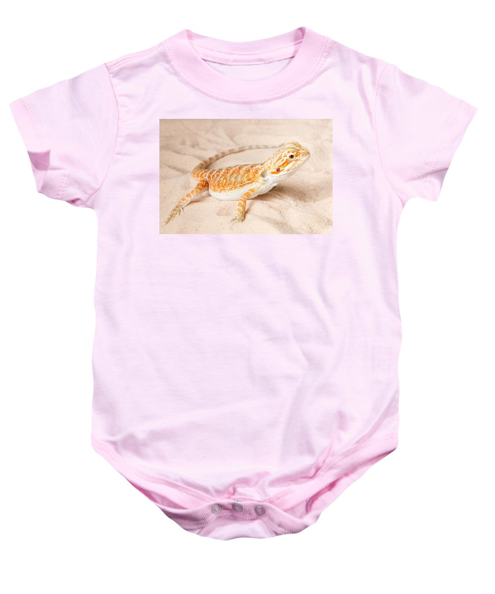 Animal Baby Onesie featuring the photograph Bearded Dragon Pogona Sp. On Sand by David Kenny