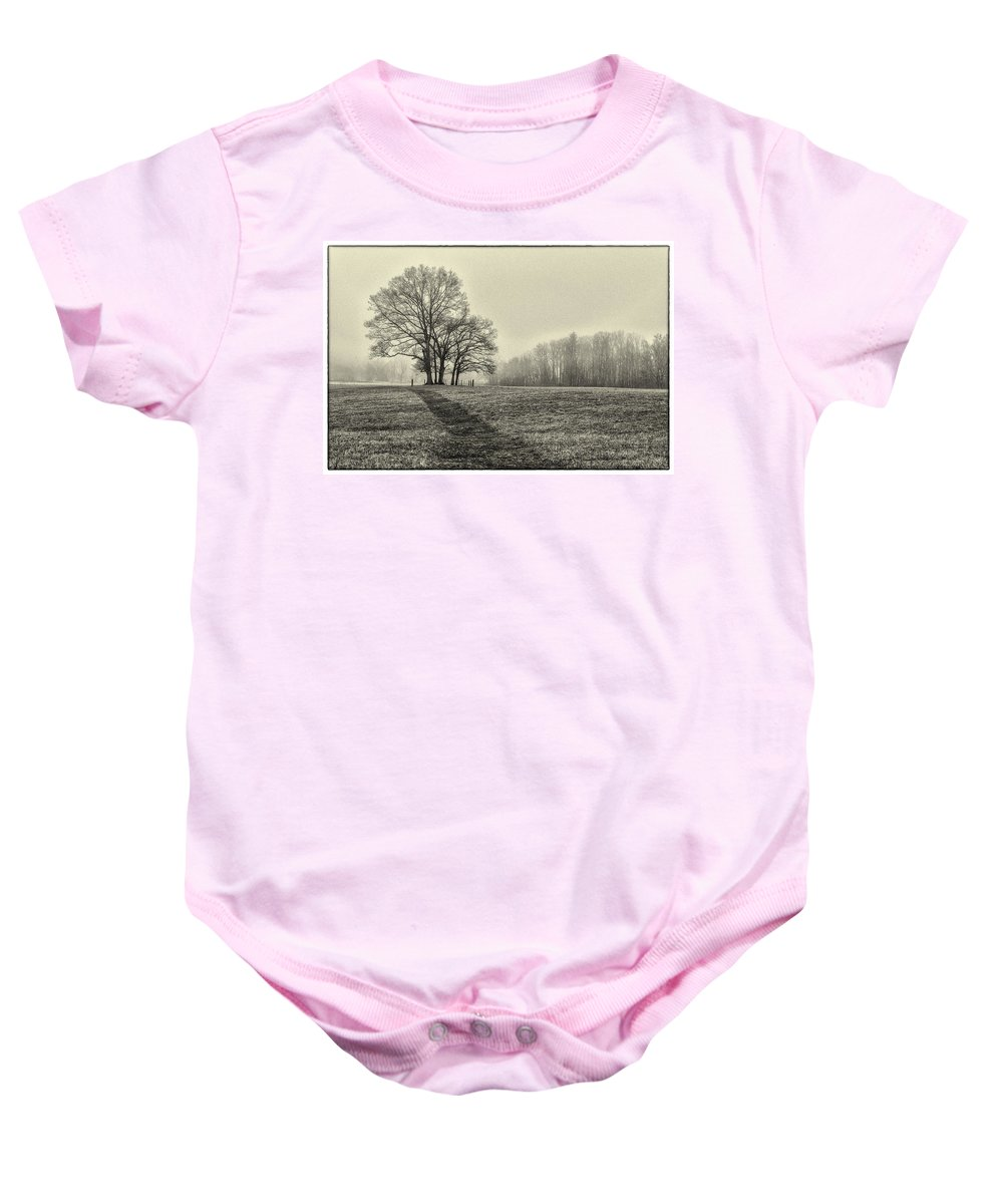 Cemetery Baby Onesie featuring the photograph Cemetery Trees In The Fog E185 by Wendell Franks