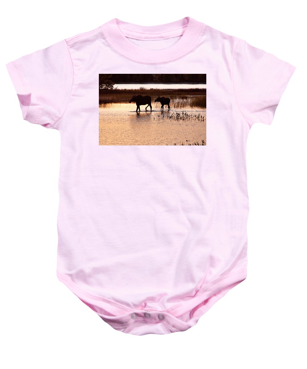 Sabao Baby Onesie featuring the photograph Following Mom by Brent L Ander