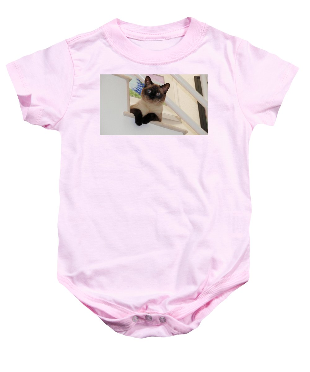 Siamese Baby Onesie featuring the photograph I'm Adorable by Jamie Frier