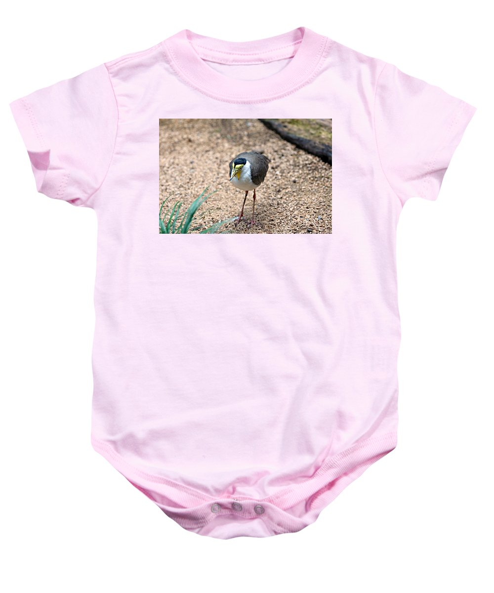 Animal Baby Onesie featuring the photograph Masked Lapwing by Paul Fell