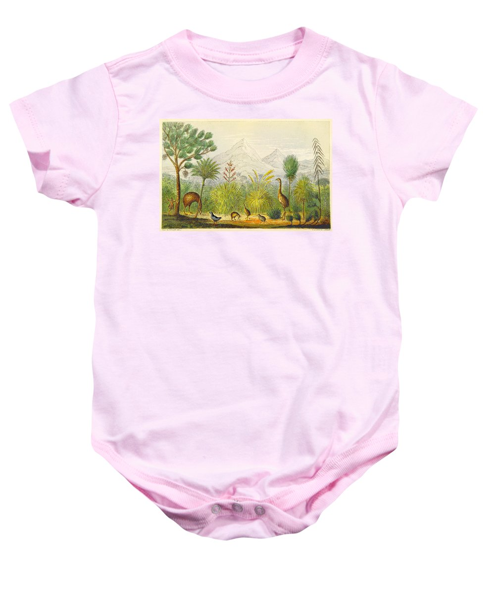 Historic Baby Onesie featuring the photograph New Zealand Kiwi, Takahe, Extinct Moa by British Library
