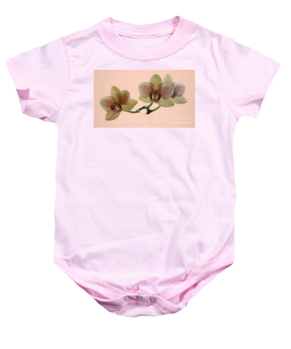 Orchid Baby Onesie featuring the photograph Orchid by Jeremy Hayden