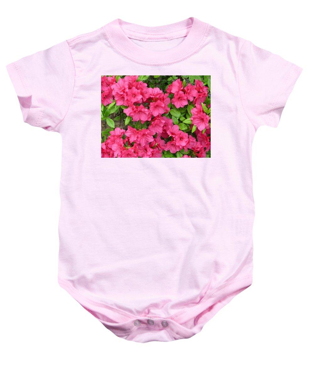 Azaleas Baby Onesie featuring the photograph Pink Aura by Sonali Gangane
