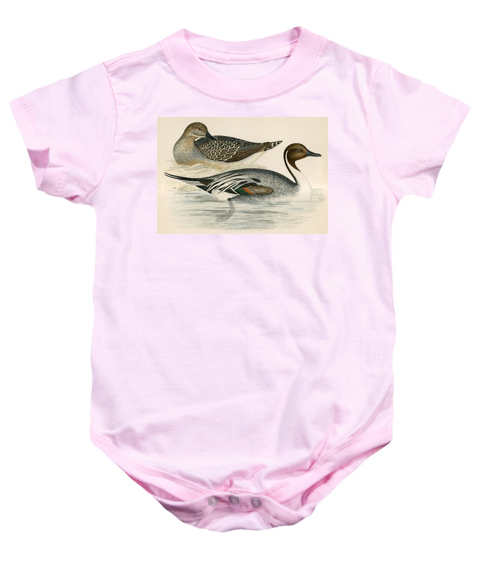 Birds Baby Onesie featuring the photograph Pintail Duck by Beverley R. Morris