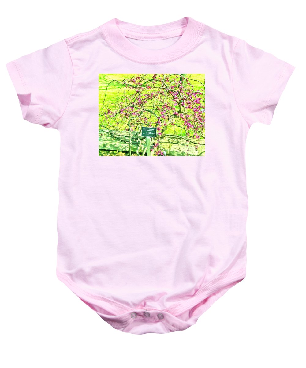 Red Bud Trees Baby Onesie featuring the photograph Red Bud Cascade by Pamela Smale Williams