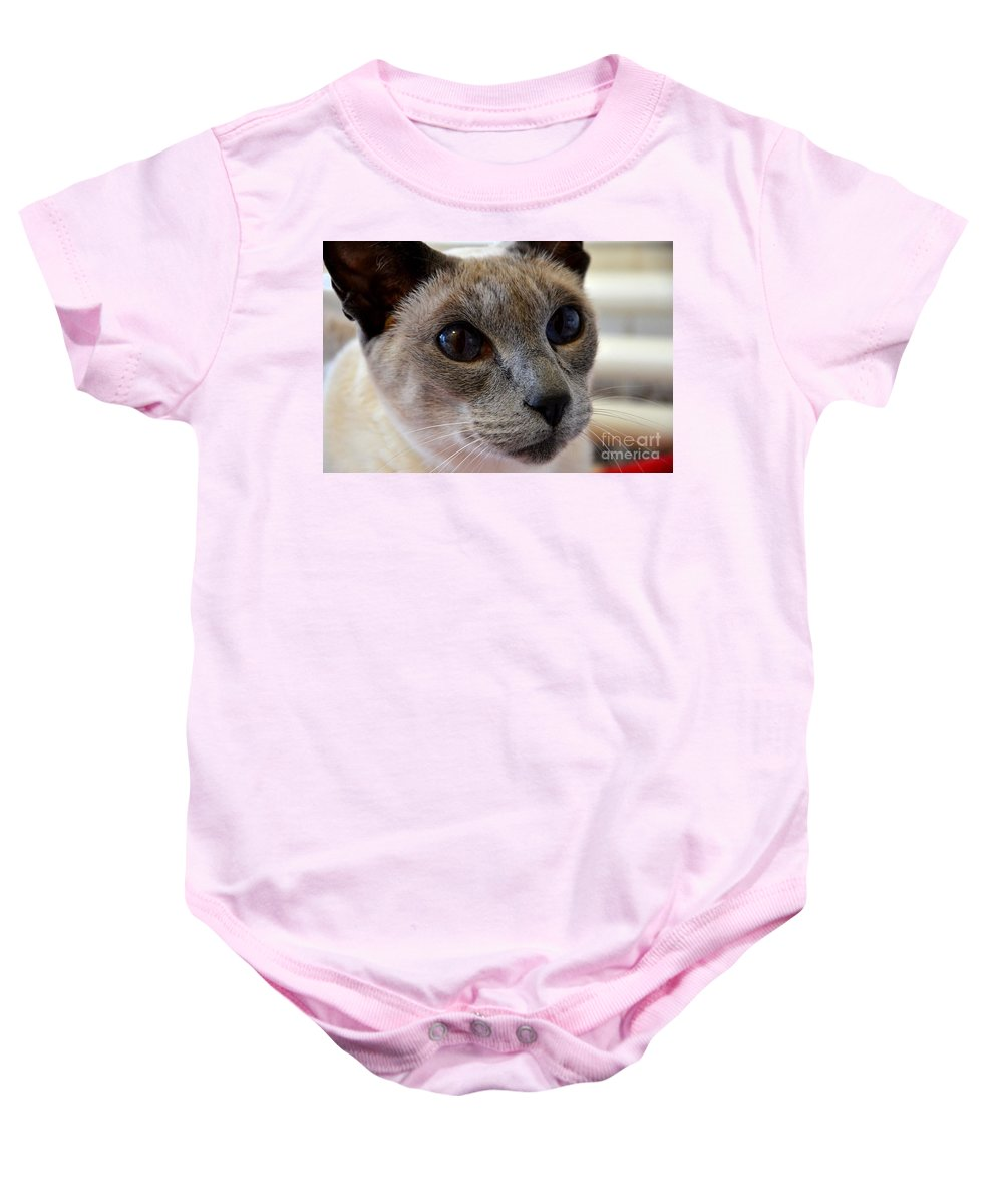 Ear Baby Onesie featuring the photograph Siamese Cat Peers Into Unknown by Imran Ahmed