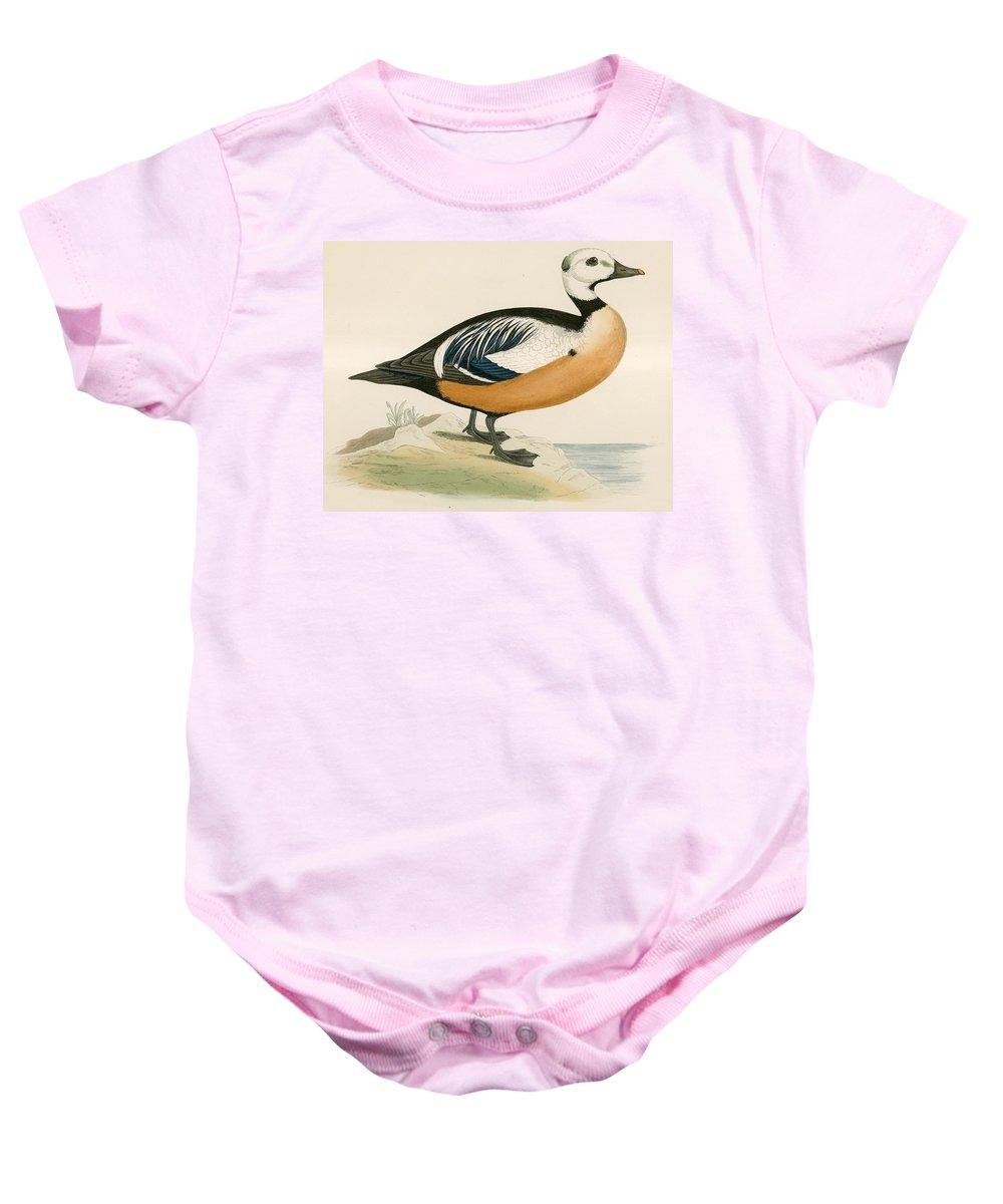 Birds Baby Onesie featuring the photograph Stellers Western Duck by Beverley R. Morris