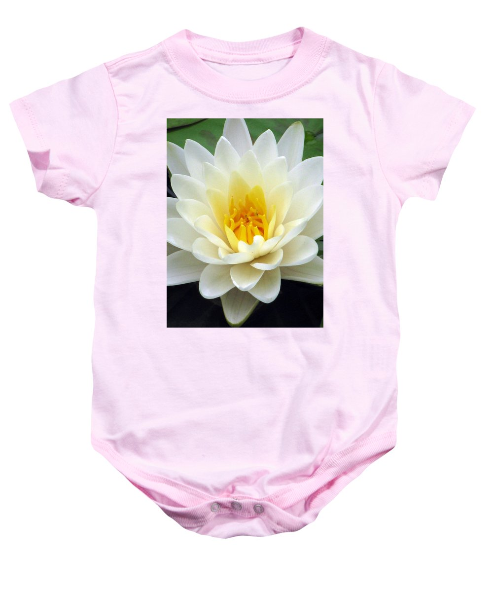 Water Lilies Baby Onesie featuring the photograph The Water Lilies Collection - 03 by Pamela Critchlow