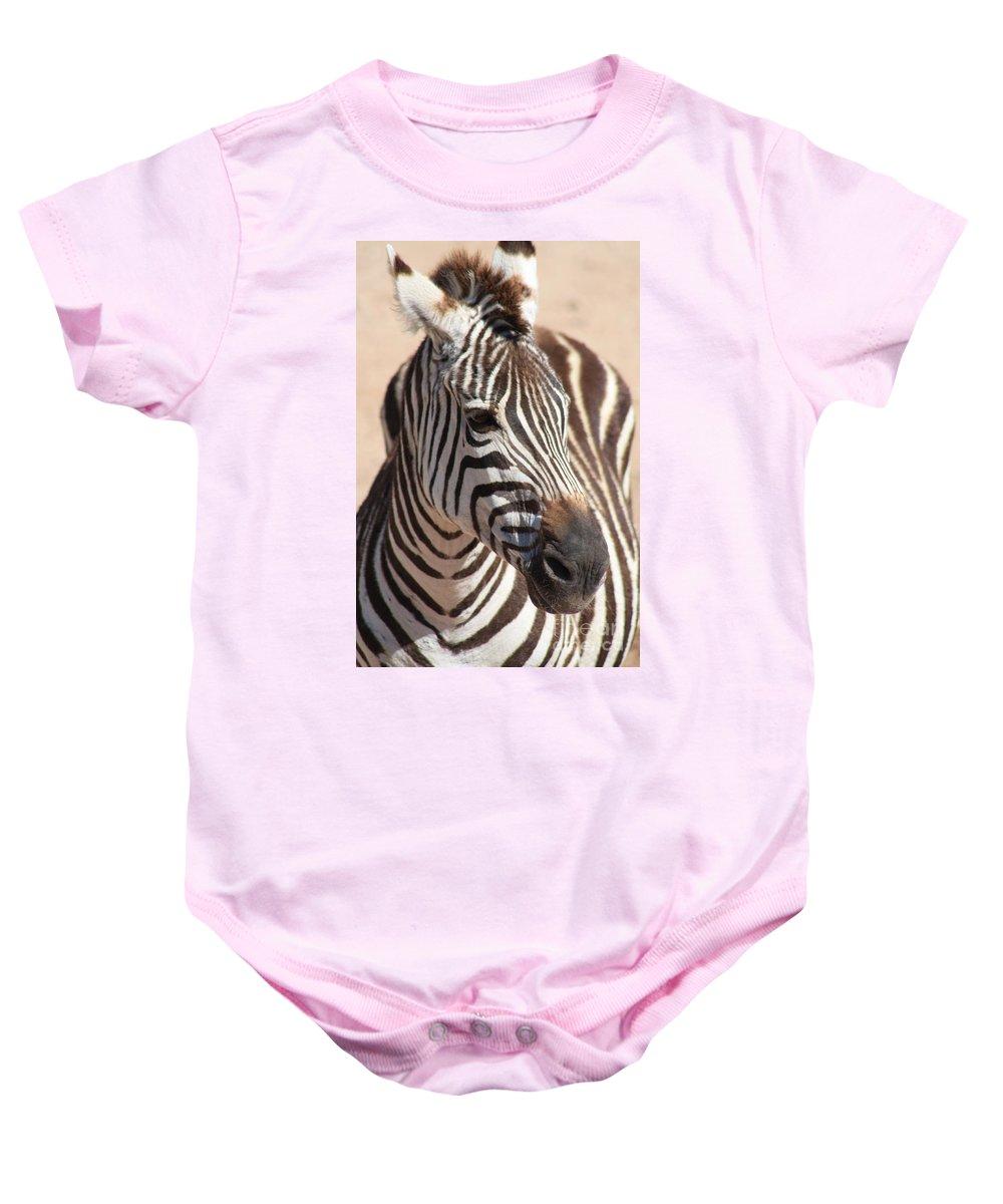 Zebra Baby Onesie featuring the photograph Zebra by Brandi Maher