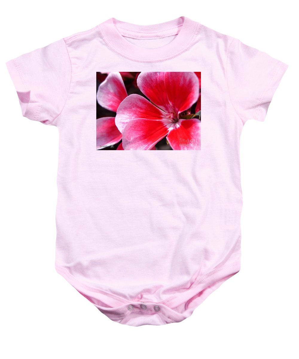 Zonal Geranium Baby Onesie featuring the photograph Zonal Geranium Named Candy Fantasy Kiss by J McCombie