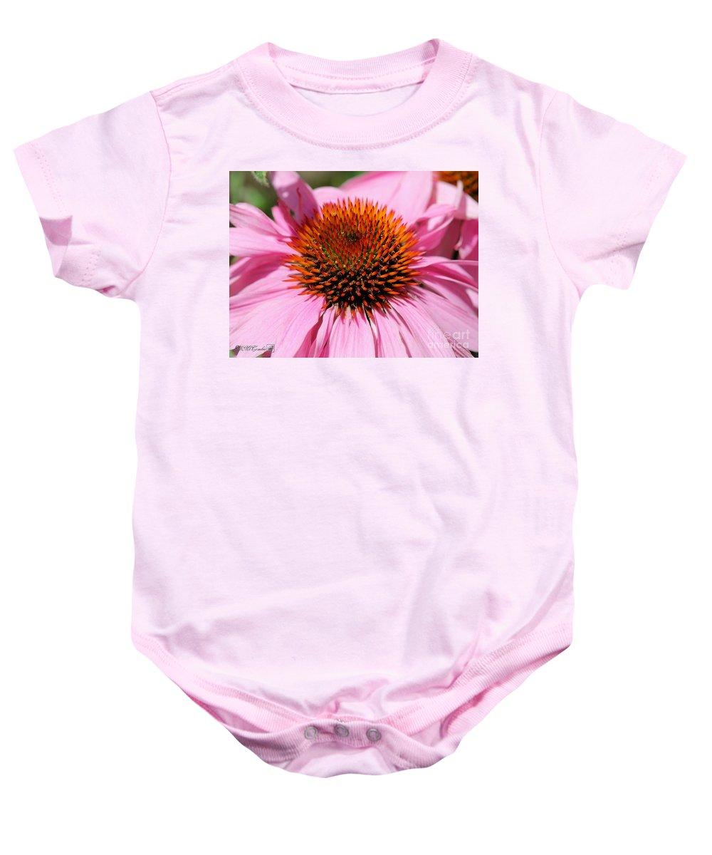 Echinacea Purpurea Baby Onesie featuring the photograph Echinacea Purpurea Or Purple Coneflower by J McCombie
