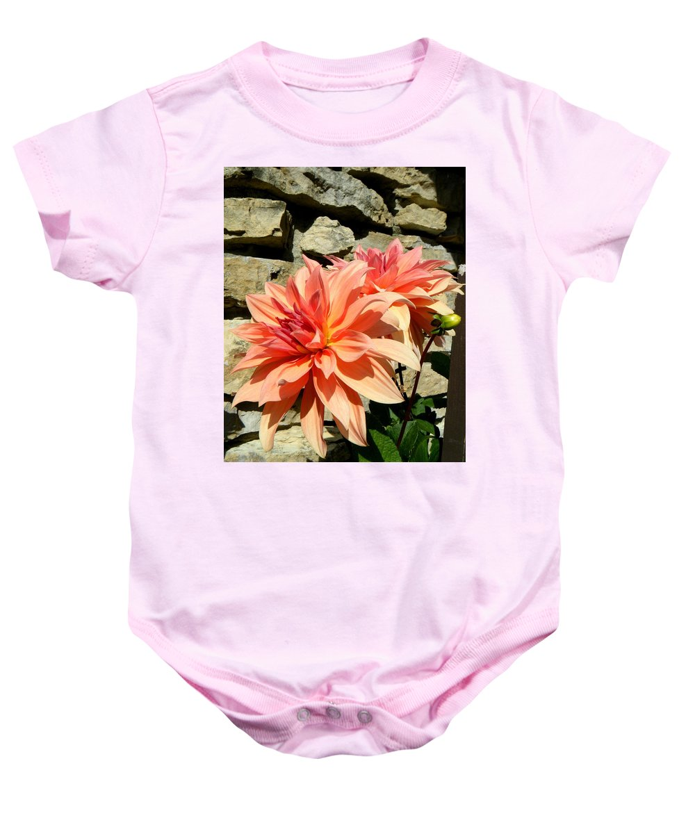Landscapes Baby Onesie featuring the photograph Blushing Peach Dahlias by April Patterson