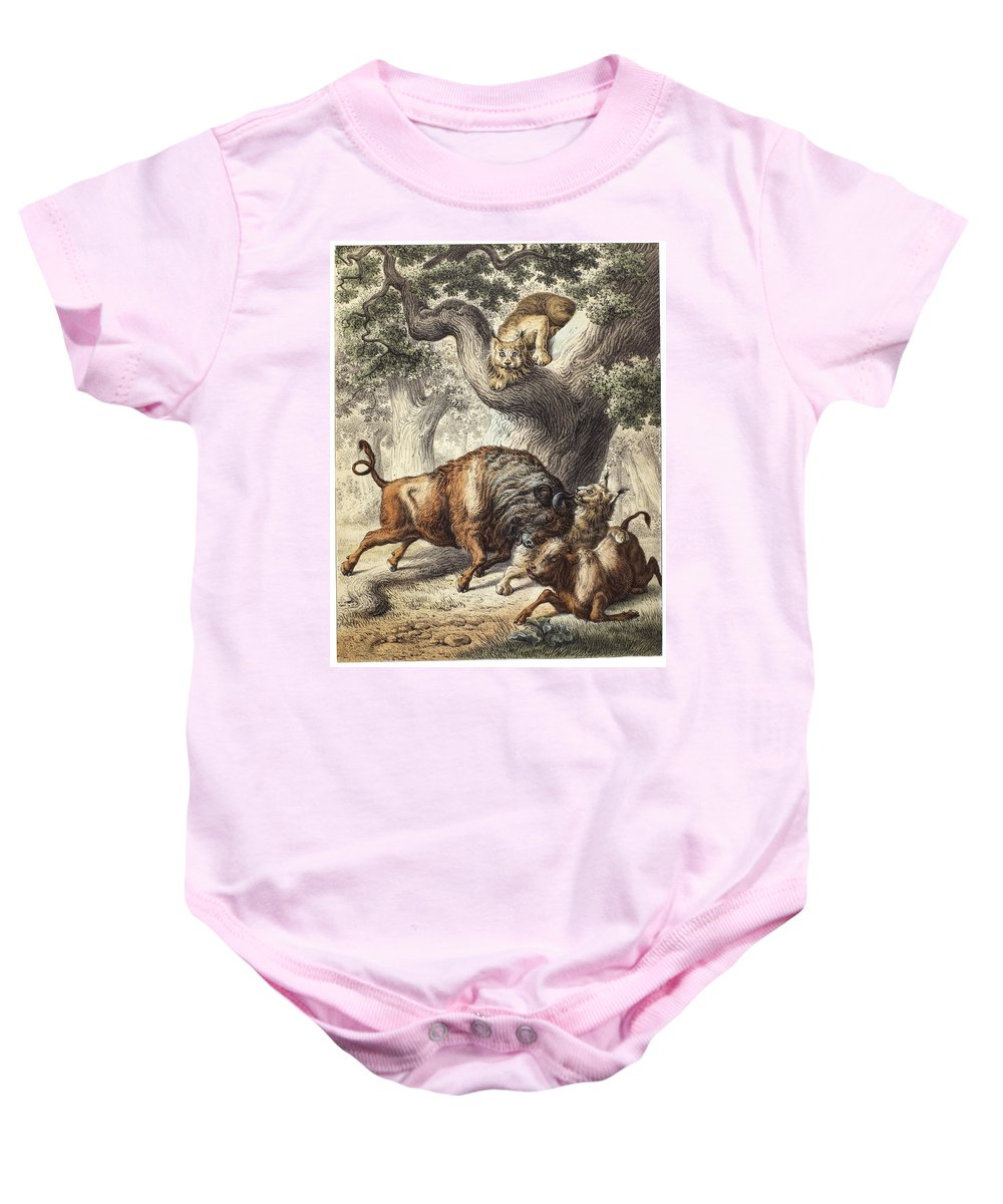 19th Century Baby Onesie featuring the photograph Buffalo & Lynx by Granger