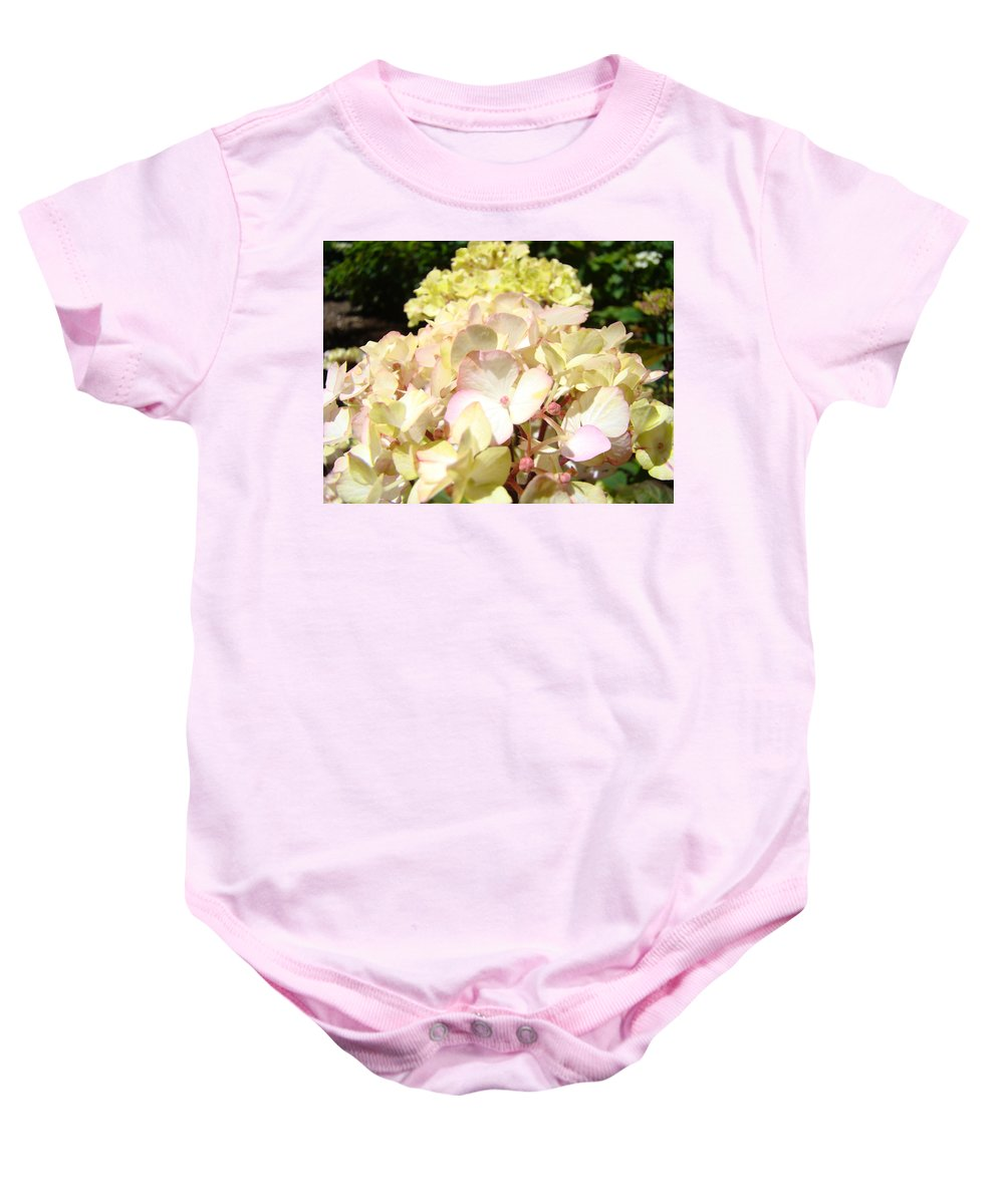 Nature Baby Onesie featuring the photograph Cream Pink Hydrangea Flowers Art Prints Floral by Baslee Troutman