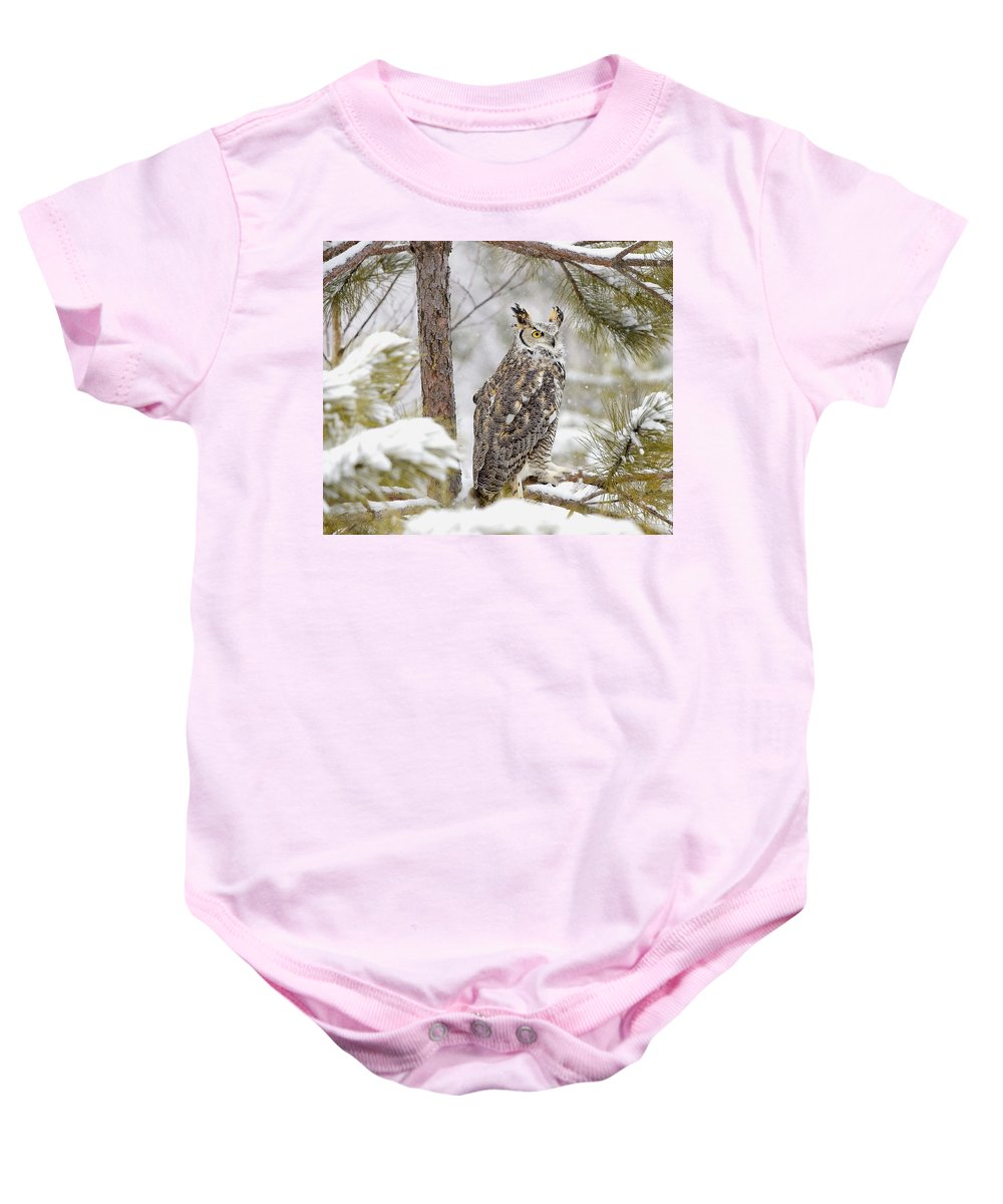 Dignity Baby Onesie featuring the photograph Long Eared Owl by John Pitcher