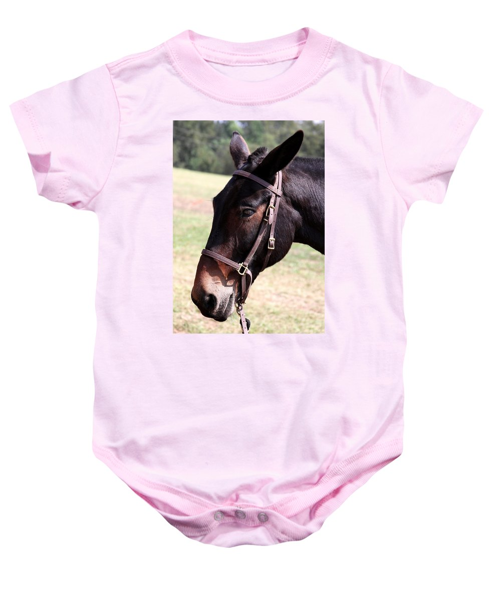 Mule Baby Onesie featuring the photograph Mule by Travis Truelove