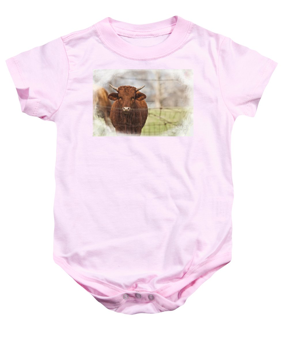 Farm Animals Baby Onesie featuring the photograph Oh Fence Please Hold by Kim Henderson