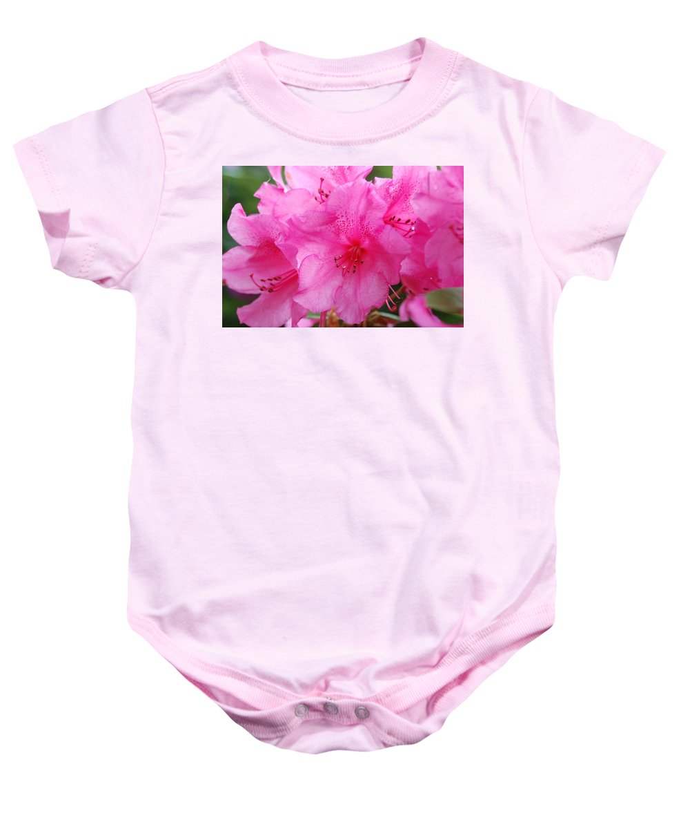 Pink Baby Onesie featuring the photograph Pink Rhody by Michael Merry