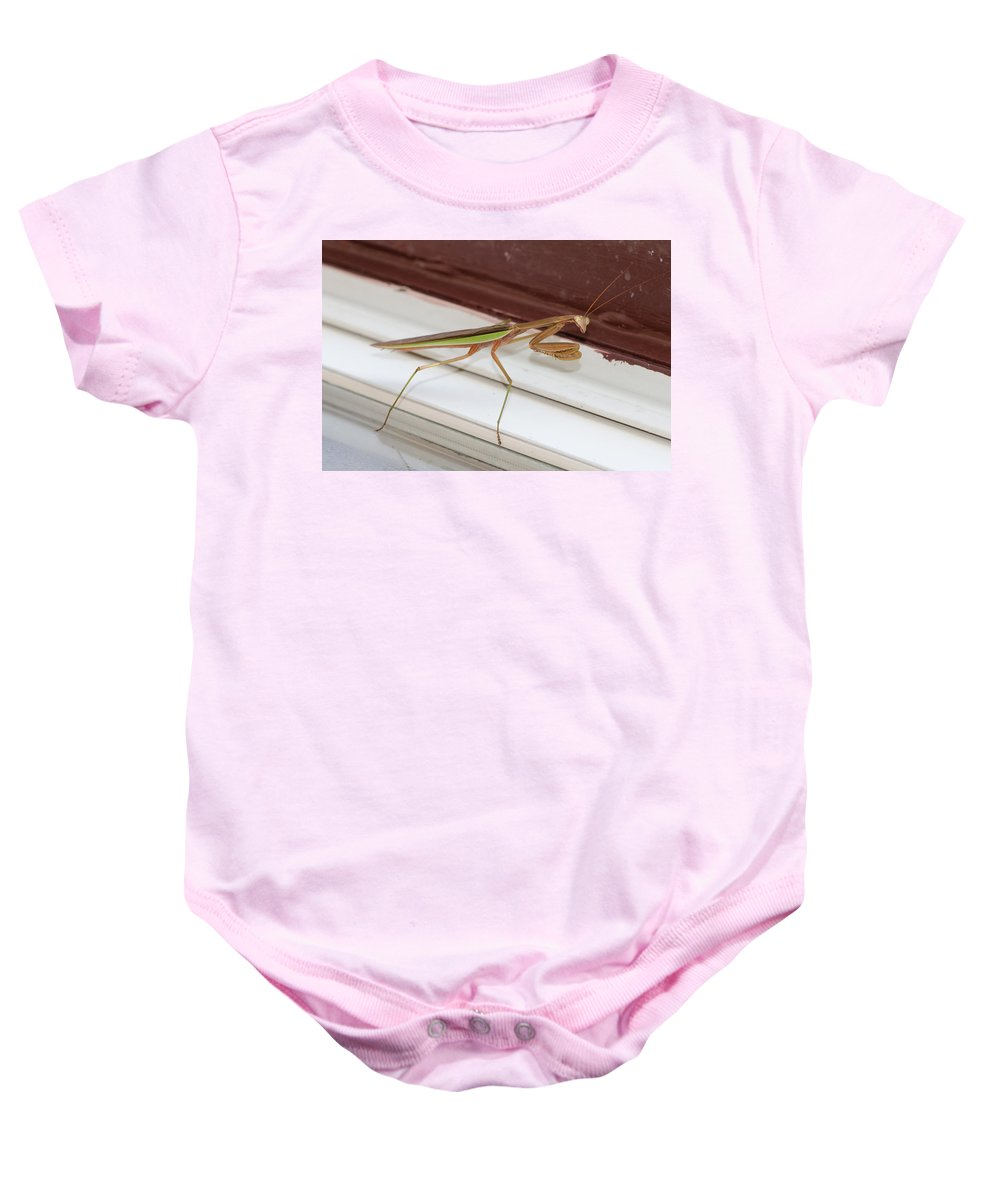Bug Baby Onesie featuring the photograph Praying Mantis by Shirley Tinkham