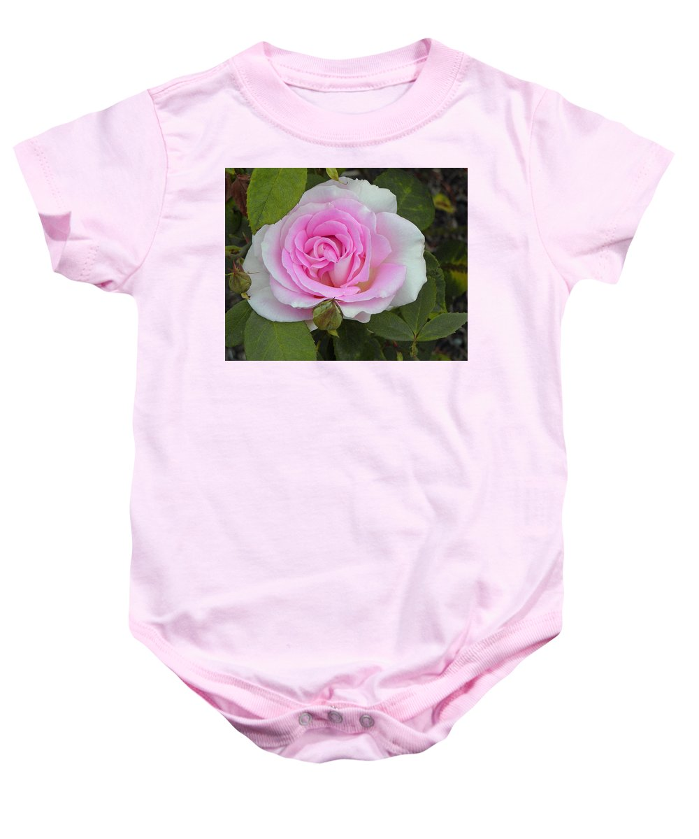 Soft Pink Rose Baby Onesie featuring the photograph Rosy by Tikvah's Hope