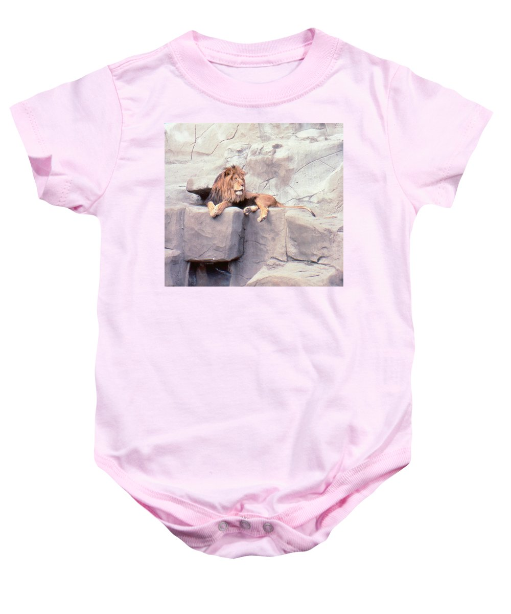 Animals Baby Onesie featuring the photograph The King At Rest by Greg Plamp