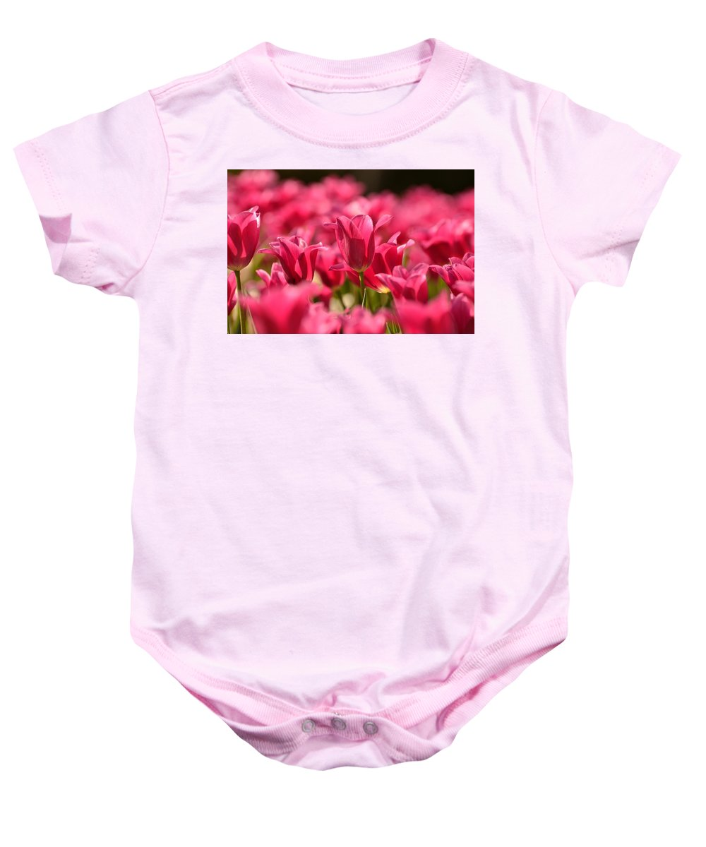 Tulips Baby Onesie featuring the photograph Tulip Bed by Joshua McCullough