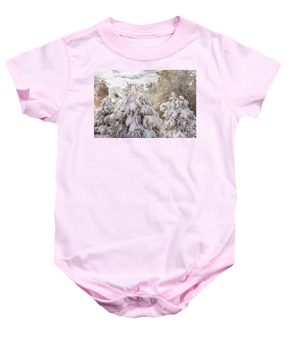 Winter Baby Onesie featuring the photograph Winter Wonderland by James BO Insogna