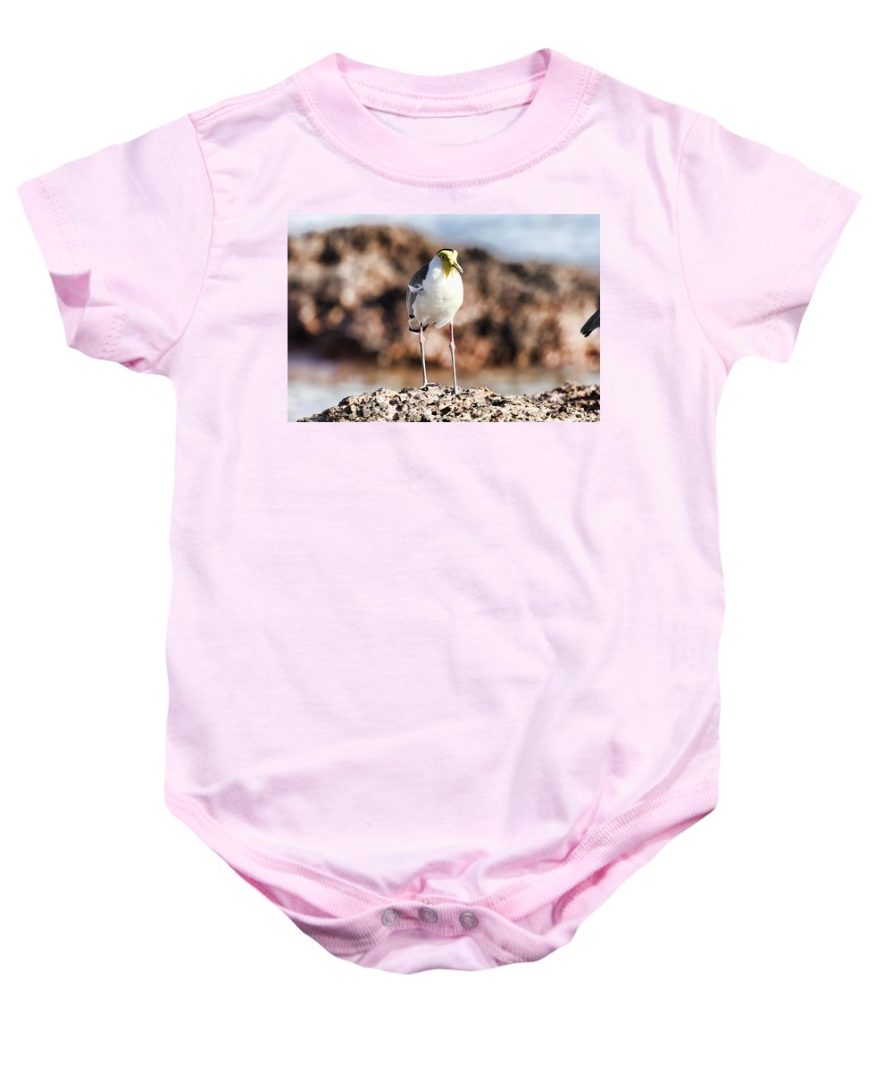 Lapwing Baby Onesie featuring the photograph Yellow Mask by Douglas Barnard