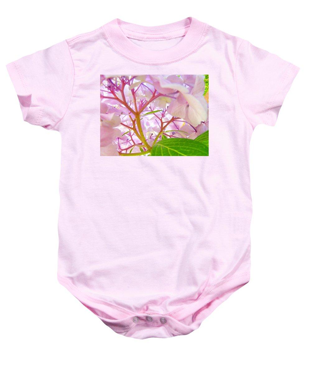 Nature Baby Onesie featuring the photograph Hydrangeas Flowers Art Prints Hydrangea Art Giclee Baslee Troutman by Baslee Troutman