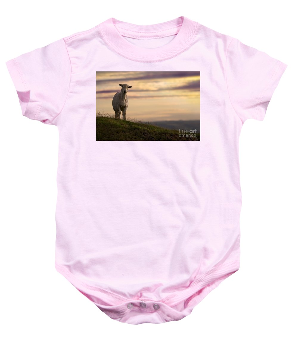 Sheep Baby Onesie featuring the photograph On The Top Of The World by Angel Ciesniarska