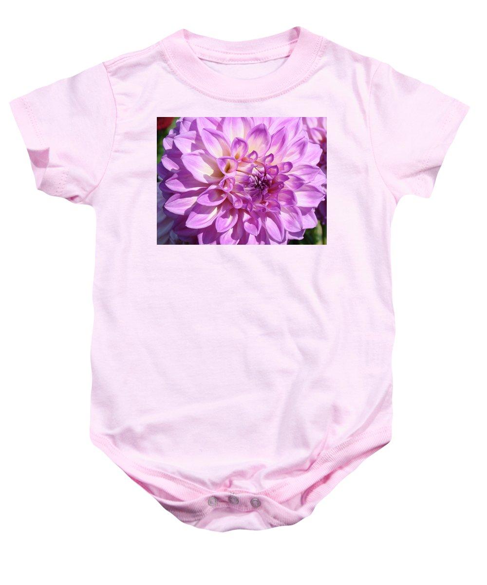 Dahlia Baby Onesie featuring the photograph Art Prints Dahlia Flower Decorative Art Garden Baslee by Baslee Troutman