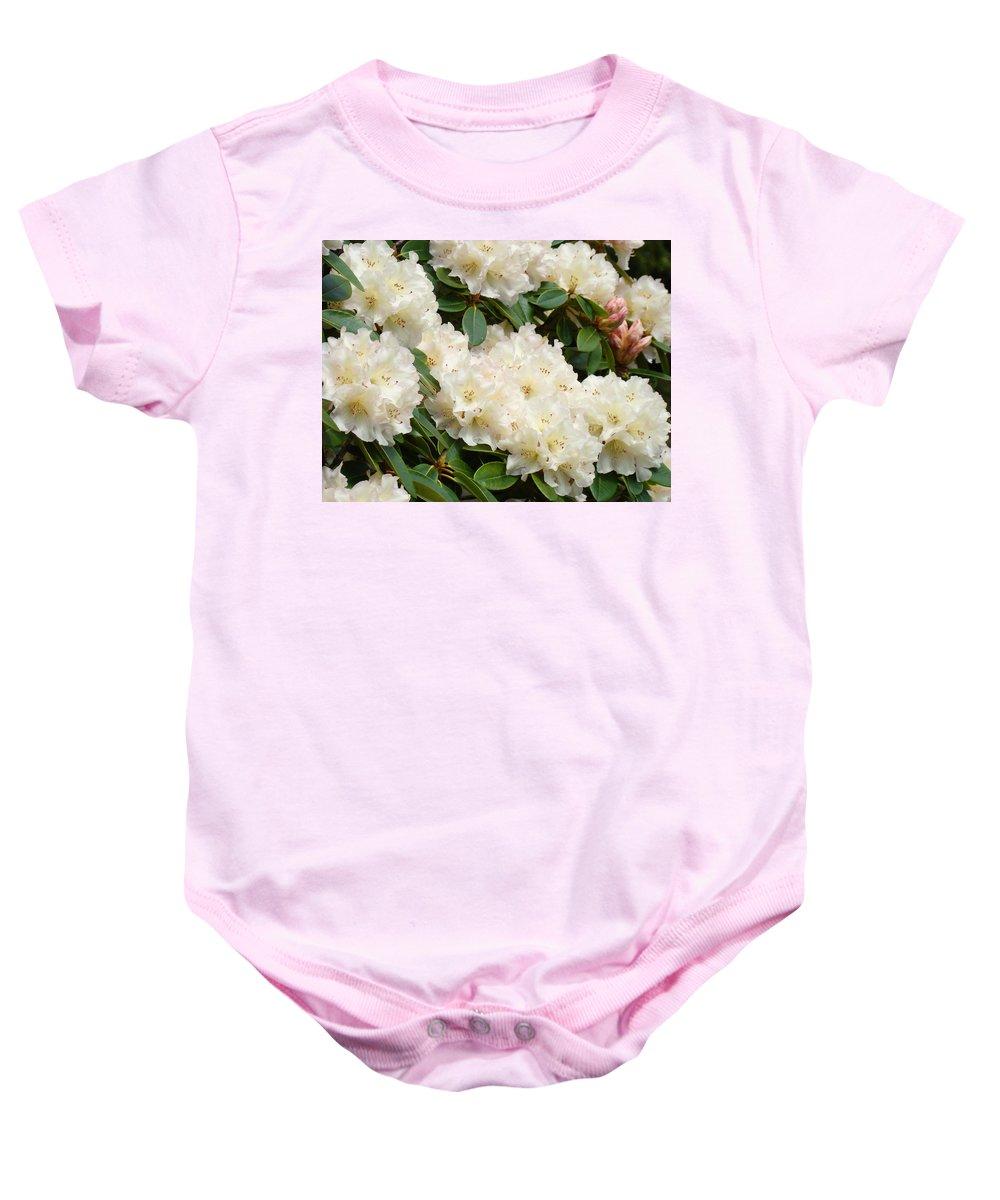 �azaleas Artwork� Baby Onesie featuring the photograph Azaleas Rhodies Landscape White Pink Rhododendrum Flowers 8 Giclee Art Prints Baslee Troutman by Baslee Troutman