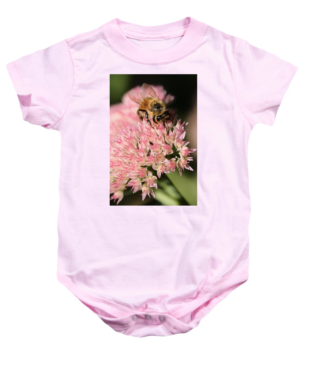 Bee Baby Onesie featuring the photograph Bee On Flower 4 by Angela Rath