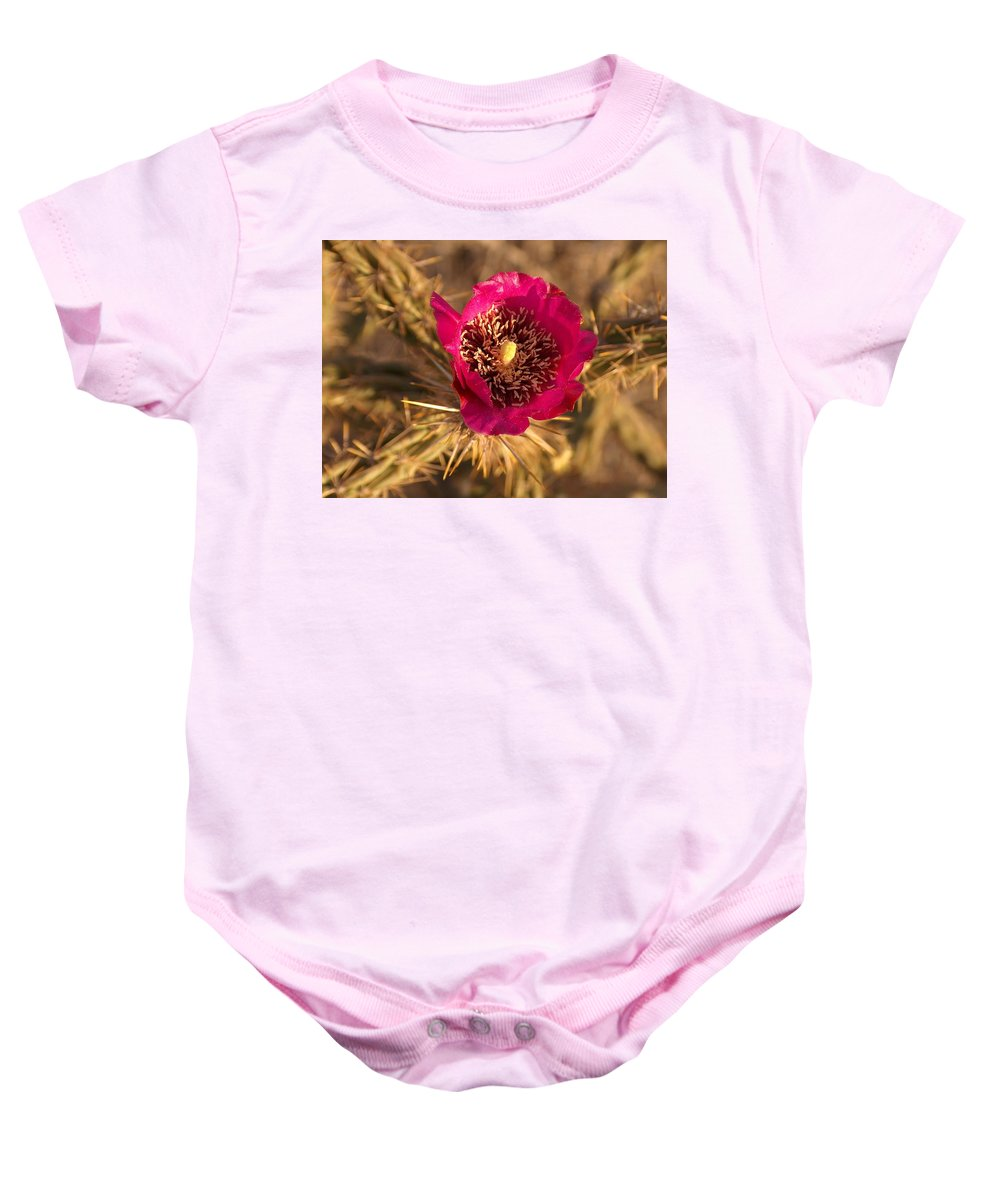 Cactus Flowers Wildflowers Baby Onesie featuring the photograph Cactus Flower 1 by Tim McCarthy