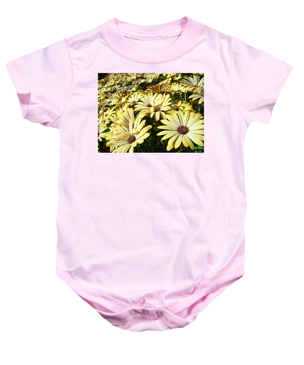 Daisy Baby Onesie featuring the photograph Field Of Daisies Landscape Floral Art Prints Daisy Baslee Troutman by Baslee Troutman