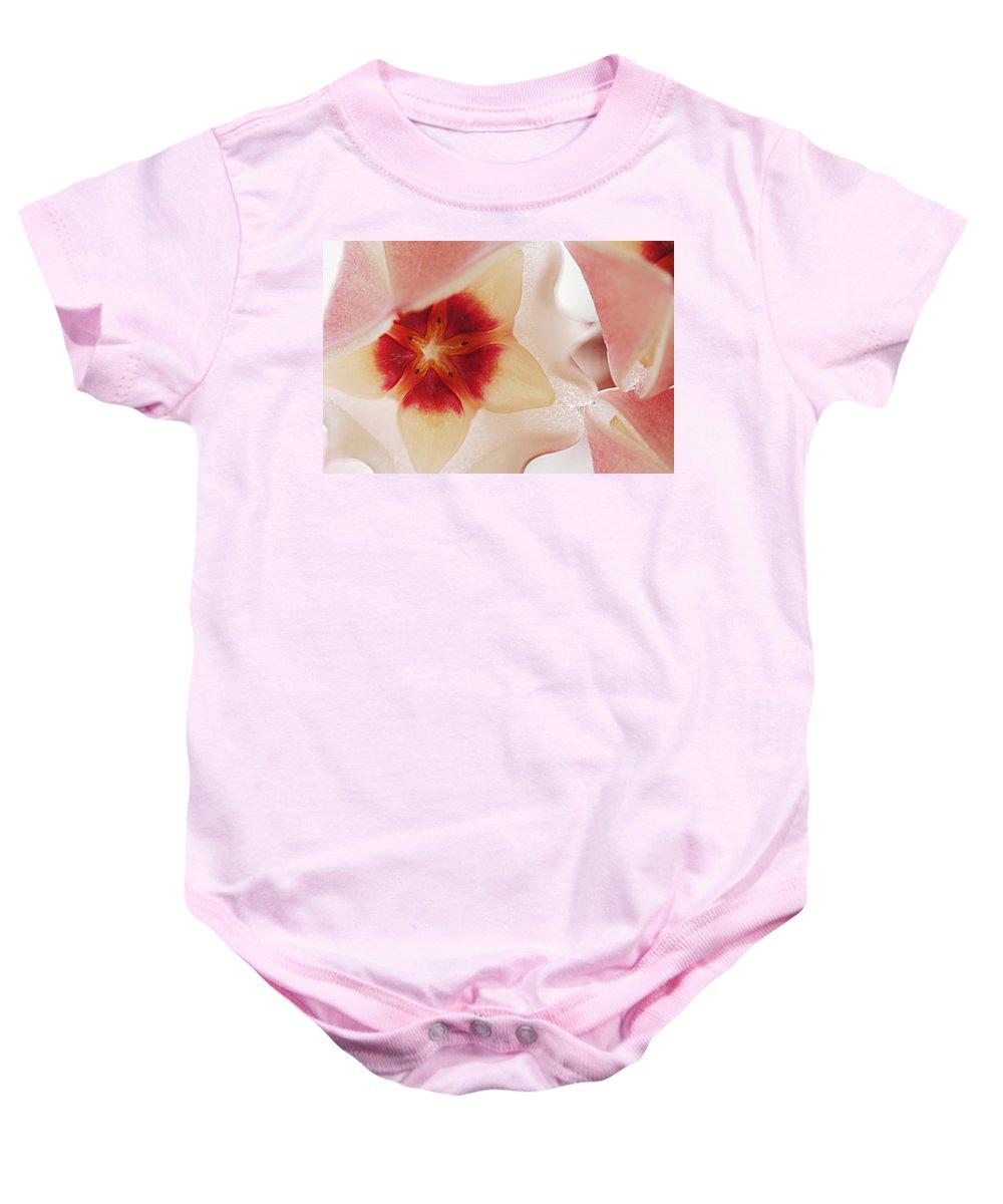 Flower Baby Onesie featuring the photograph Flower Hoya 3 by Jill Reger