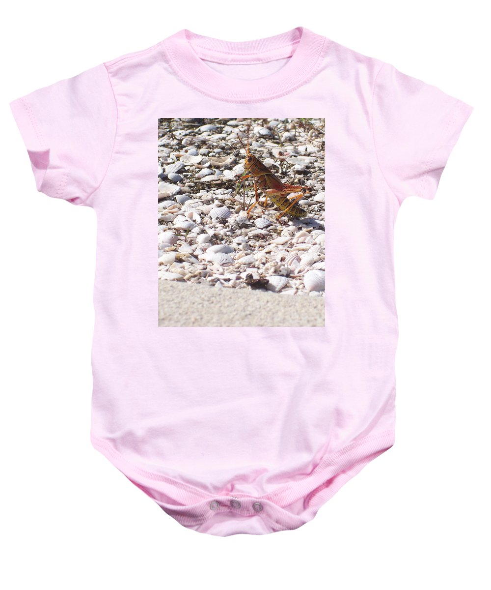 Florida Baby Onesie featuring the photograph Grasshopper by Chris Andruskiewicz