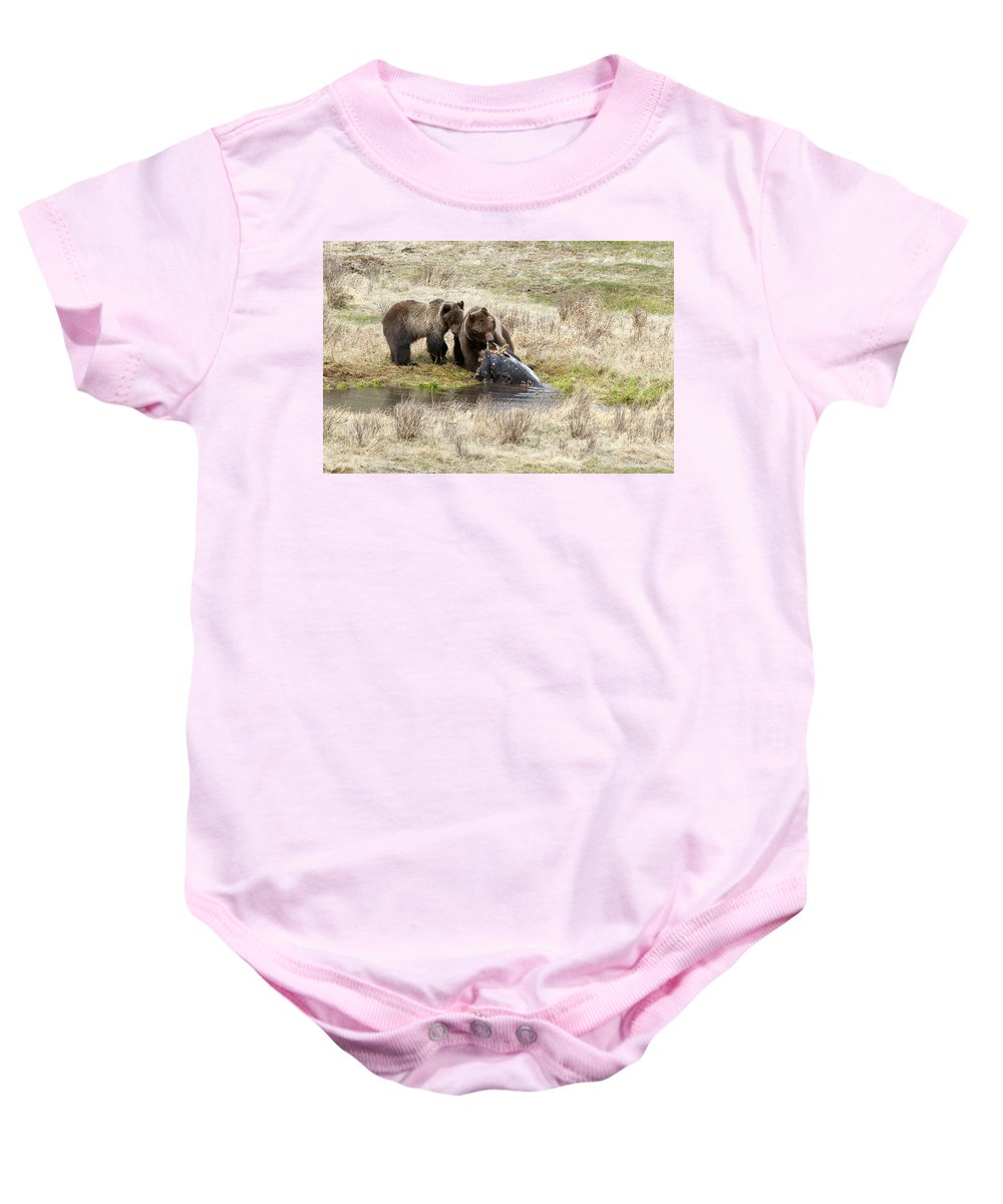Yellowstone Baby Onesie featuring the photograph Grizzly Dinner by Steve Stuller