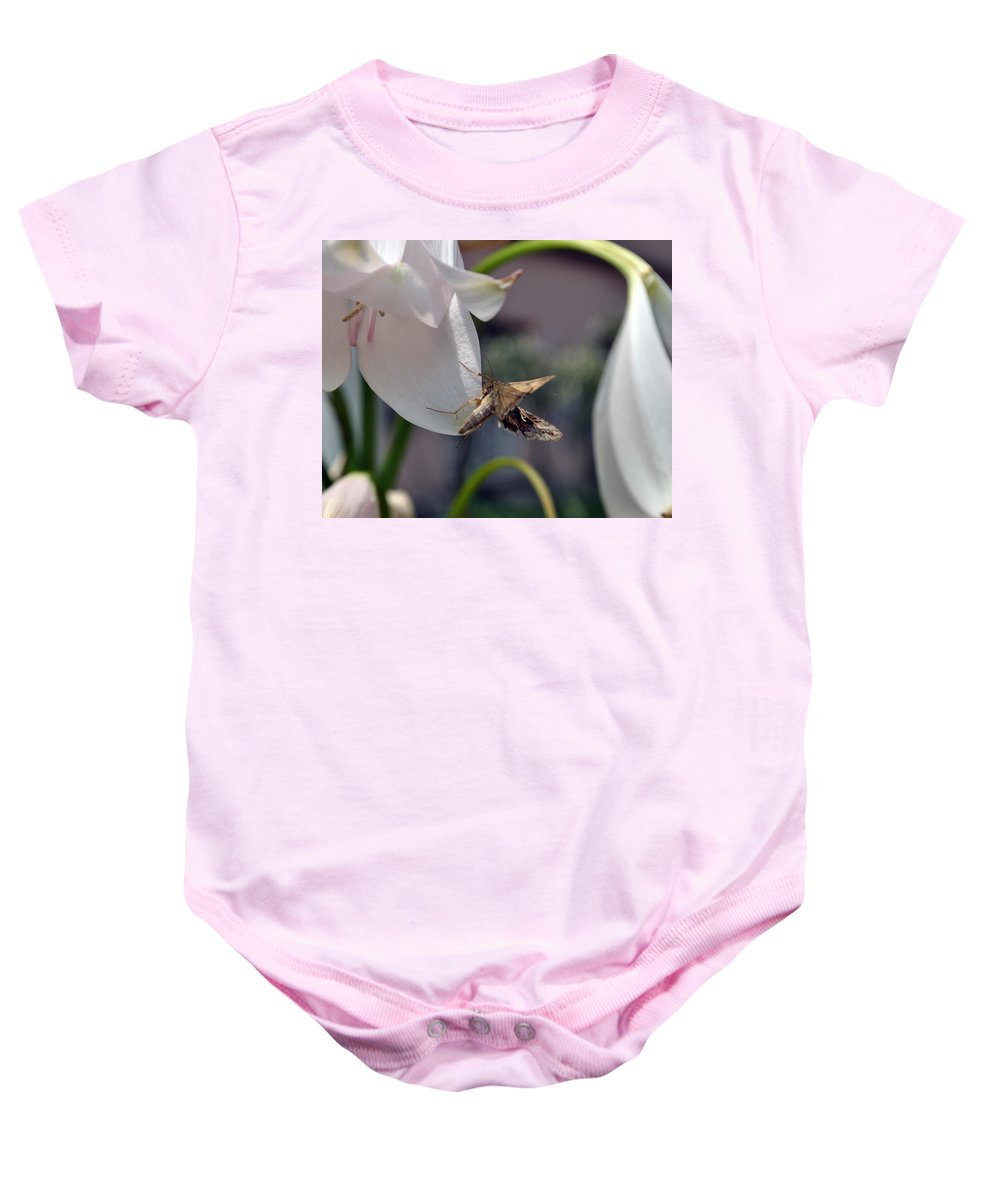 Insect Baby Onesie featuring the photograph Insect In Flower by Adis Serak