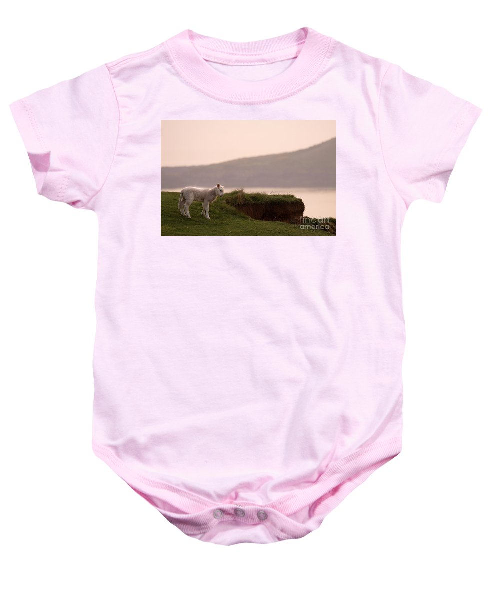 Prancing Lamb Baby Onesie featuring the photograph Lonely Little Lamb by Angel Ciesniarska